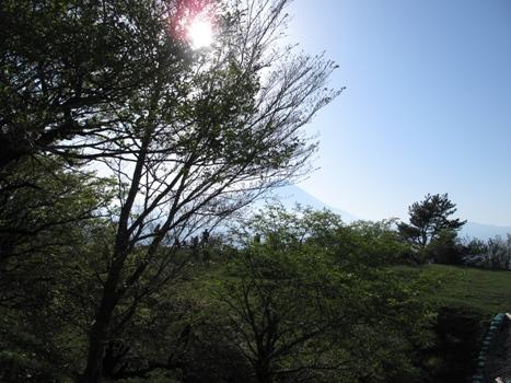さんぽ6.jpg