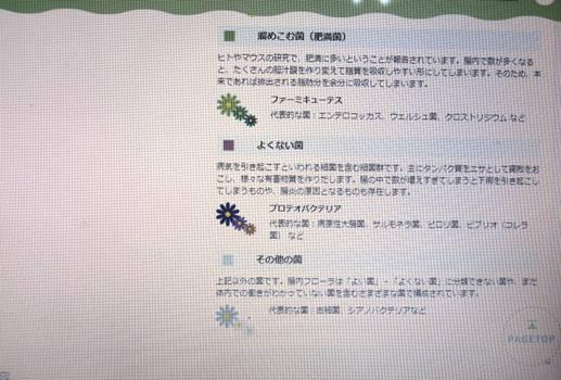 ふろら3.jpg