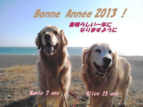 年賀2013最終版web.jpg