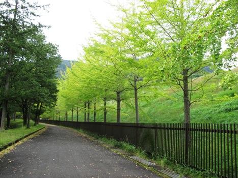 ダム公園1.jpg