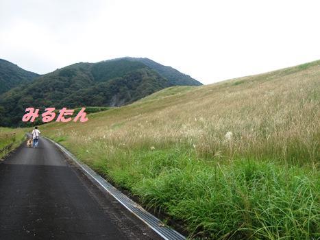 ダム公園2.jpg